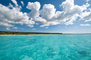 Bahia de la aguilas shore